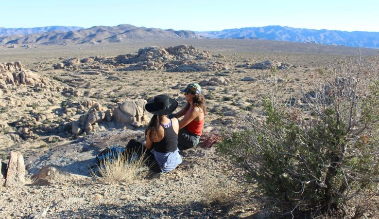 Best tIme to visit Joshua Tree