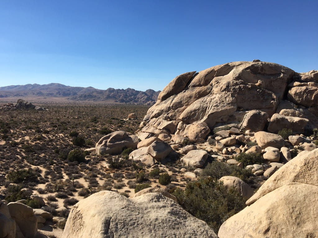 Joshua Tree National Park Best time to visit