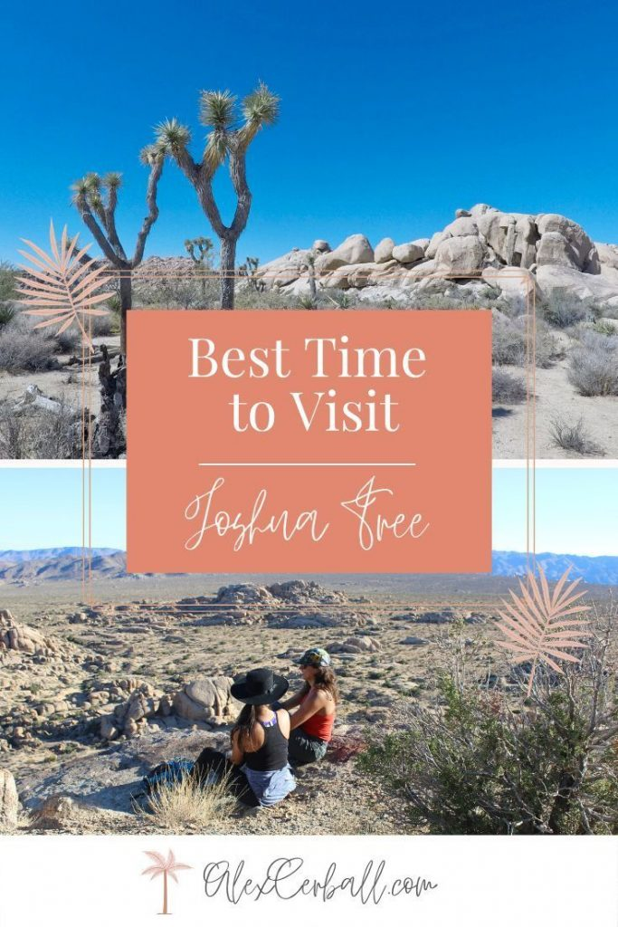 Guide to Visiting Joshua Tree National Park