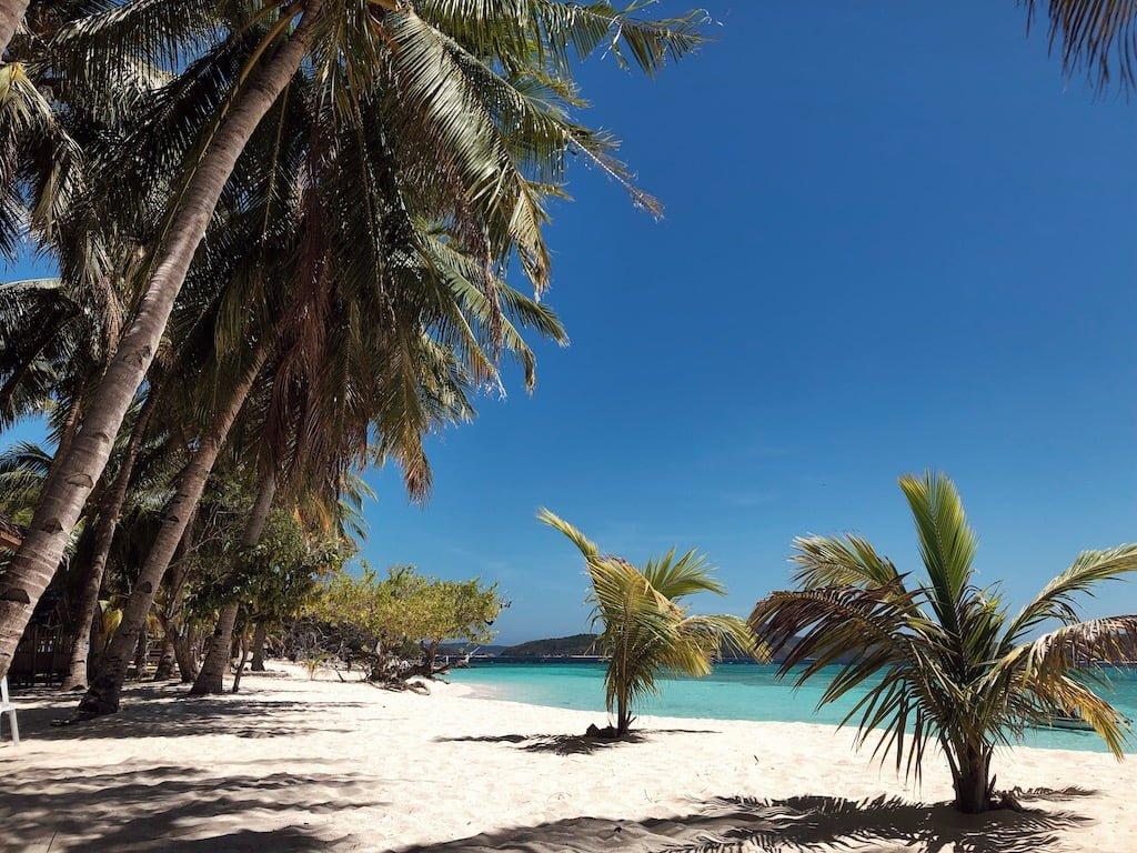 Best travel photo editing app VSCO
